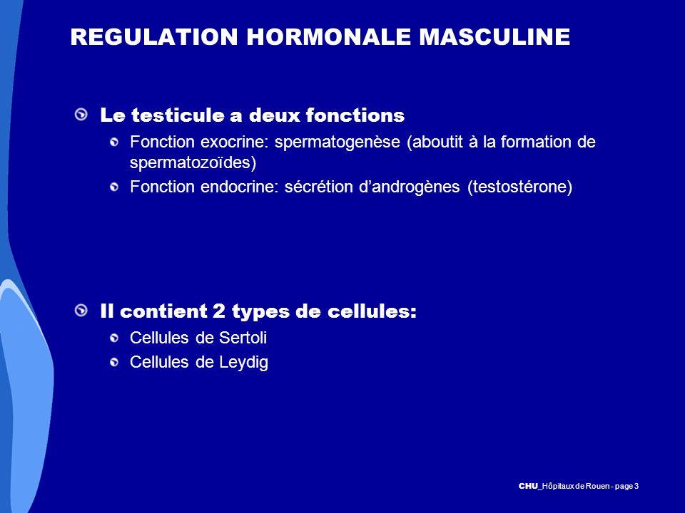 REGULATION HORMONALE MASCULINE