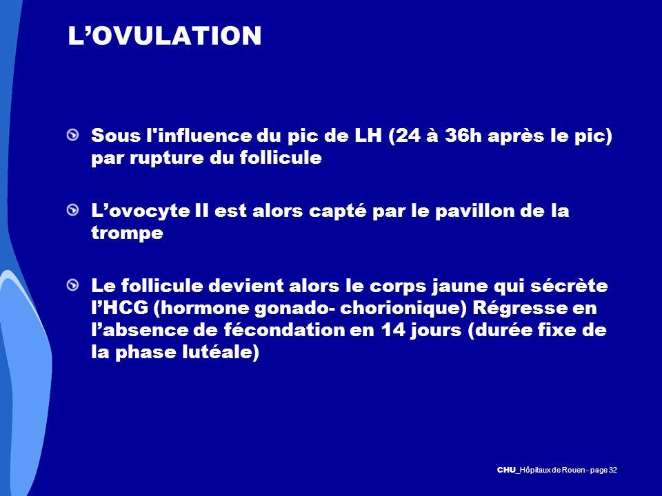 L'OVULATION Sous l influence du pic de LH (24 à 36h après le pic) par rupture du follicule.