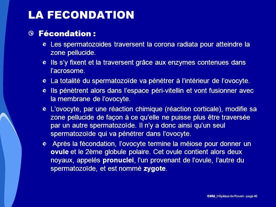 LA FECONDATION Fécondation :