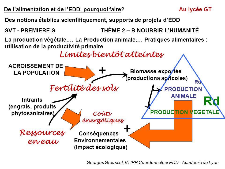 Prendre en compte l'environnement pour en assurer la durabilité