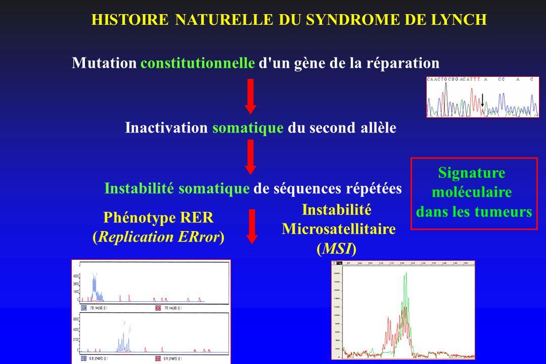 HISTOIRE NATURELLE DU SYNDROME DE LYNCH