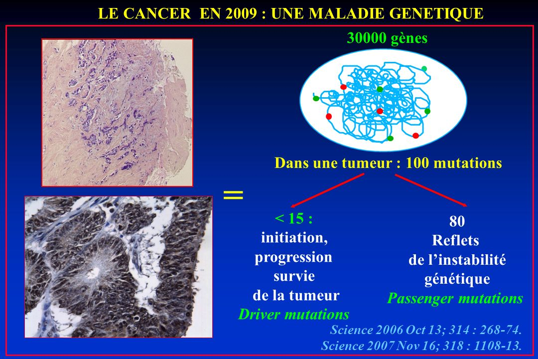 Dans une tumeur : 100 mutations