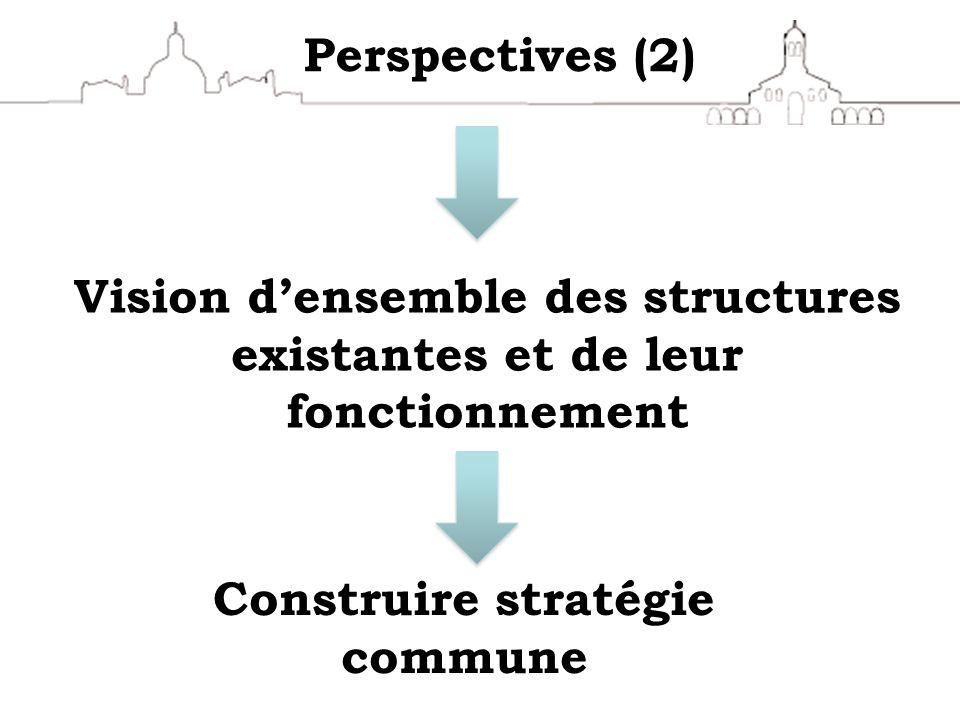 Vision d'ensemble des structures existantes et de leur fonctionnement