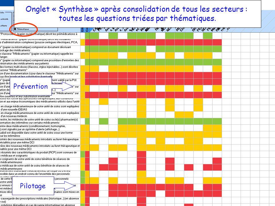 Onglet « Synthèse » après consolidation de tous les secteurs :