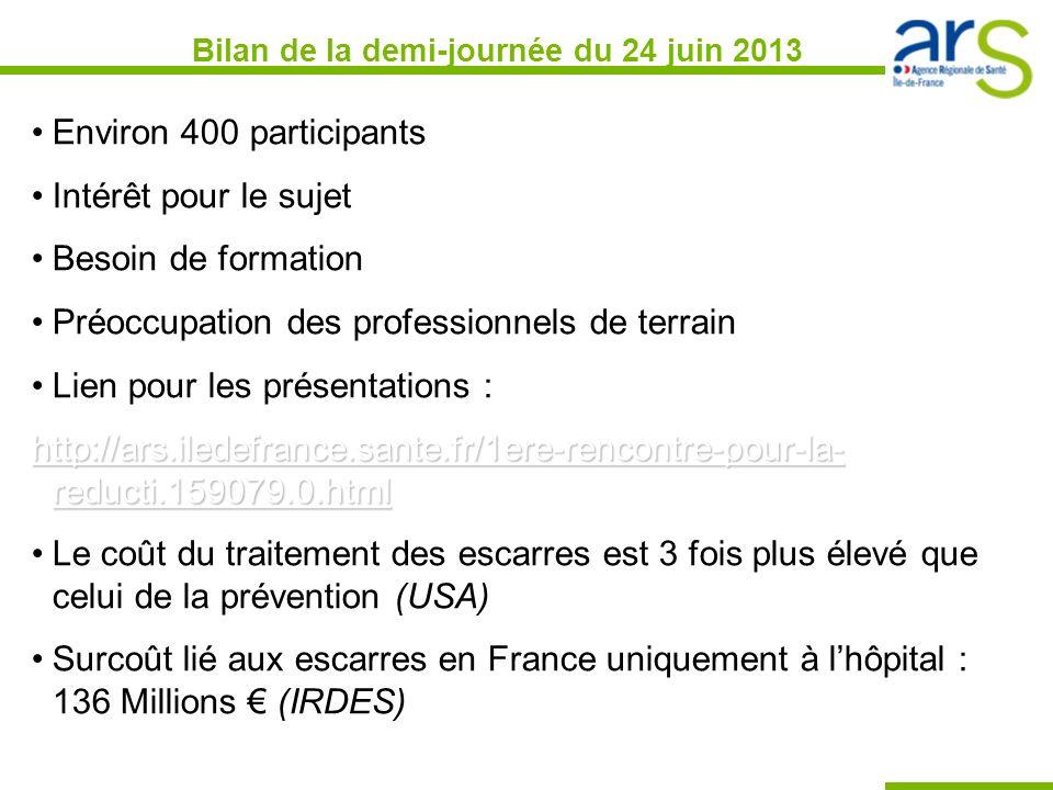 Bilan de la demi-journée du 24 juin 2013