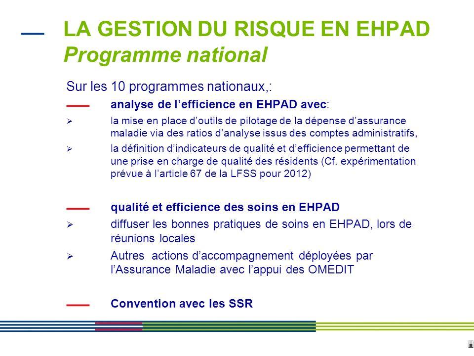 LA GESTION DU RISQUE EN EHPAD Programme national