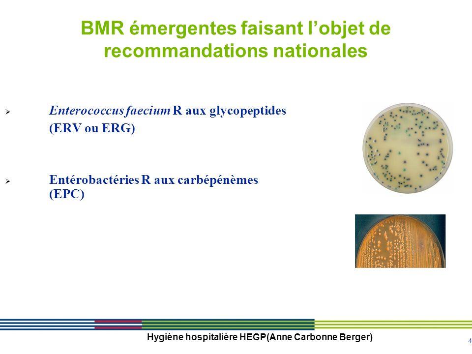 BMR émergentes faisant l'objet de recommandations nationales
