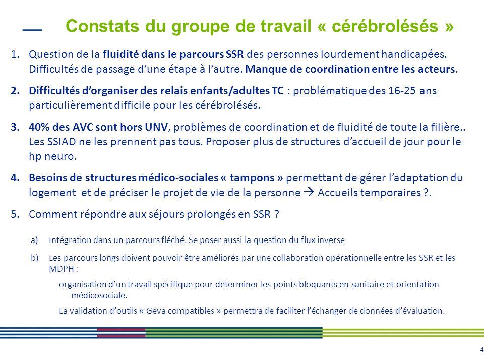Constats du groupe de travail « cérébrolésés »