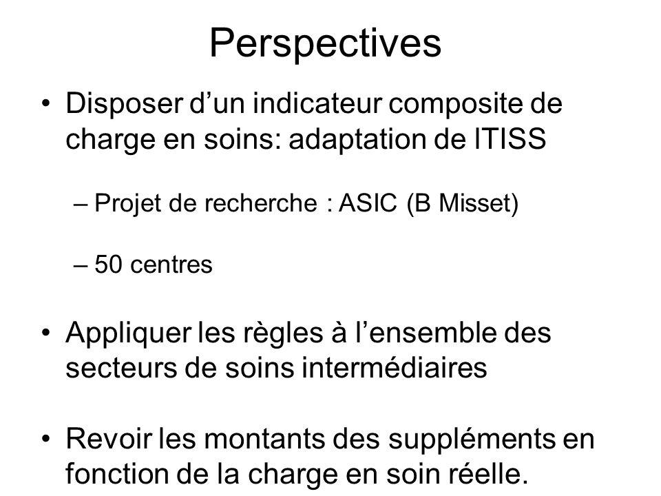 Perspectives Disposer d'un indicateur composite de charge en soins: adaptation de lTISS. Projet de recherche : ASIC (B Misset)