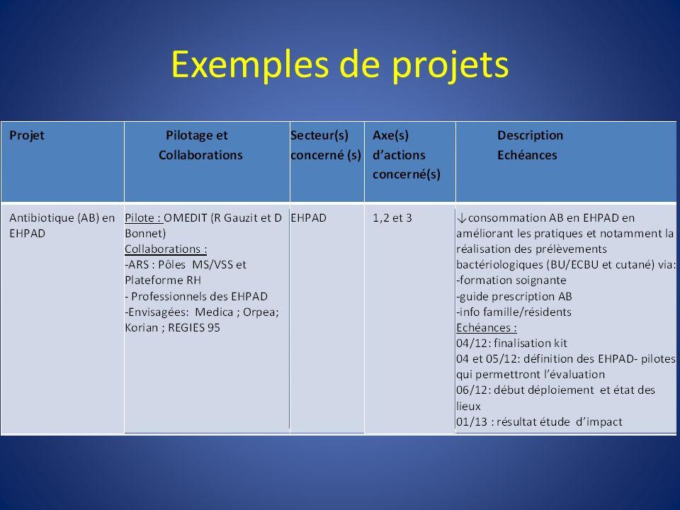 Exemples de projets