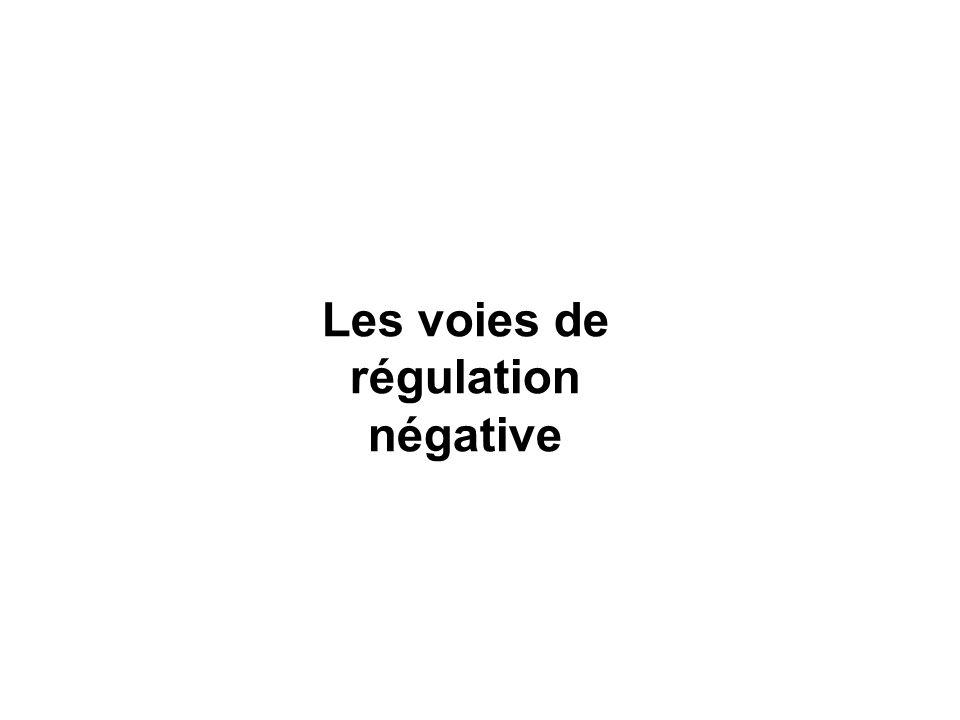 Les voies de régulation négative
