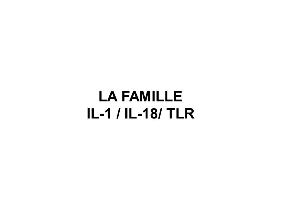 LA FAMILLE IL-1 / IL-18/ TLR
