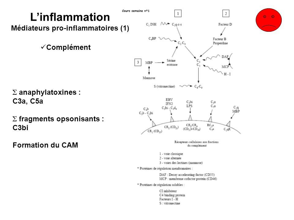 Médiateurs pro-inflammatoires (1)