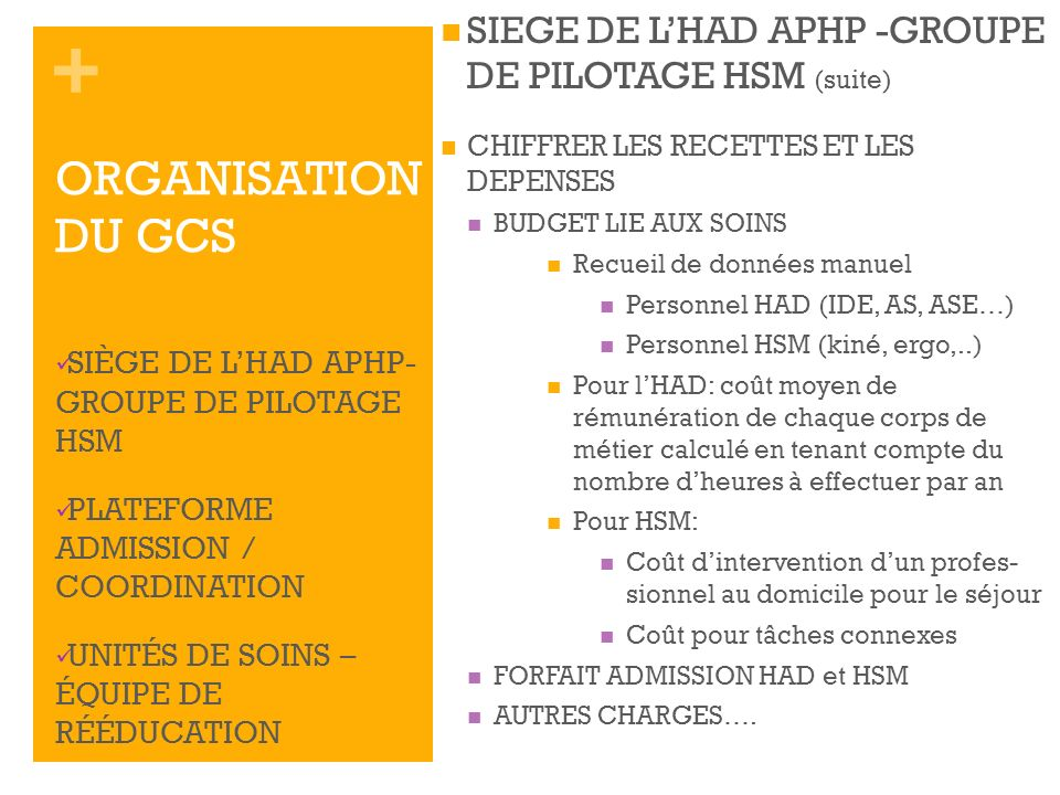 SIEGE DE L'HAD APHP -GROUPE DE PILOTAGE HSM (suite)