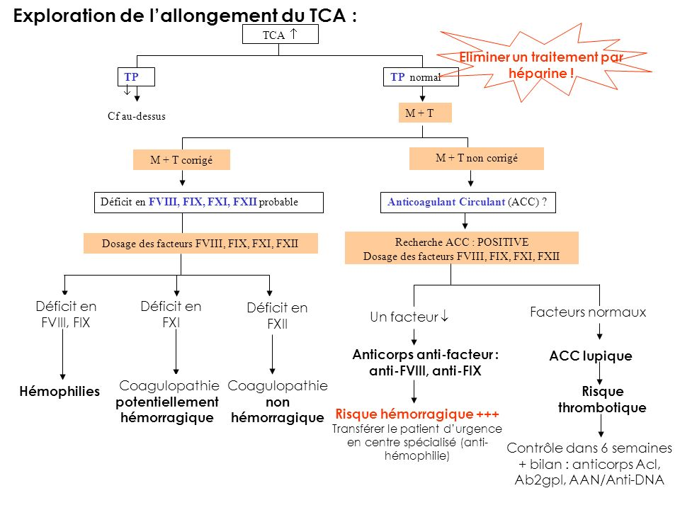 Exploration de l'allongement du TCA :