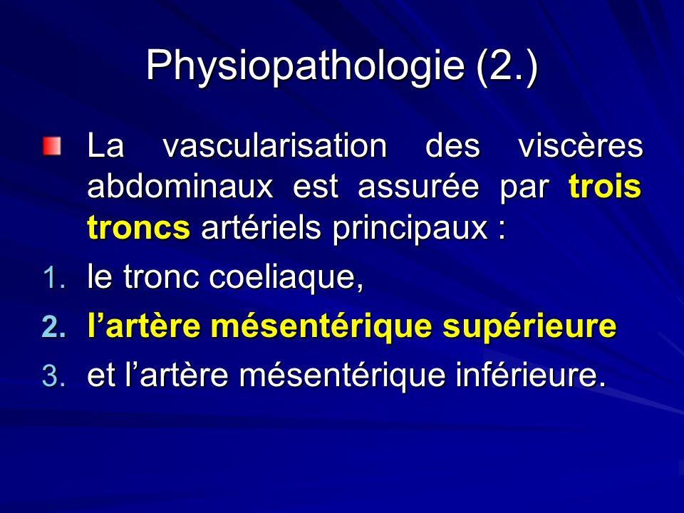 Physiopathologie (2.) La vascularisation des viscères abdominaux est assurée par trois troncs artériels principaux :