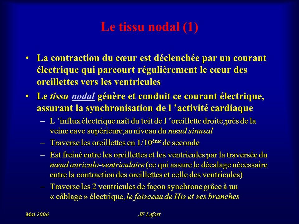 Le tissu nodal (1)