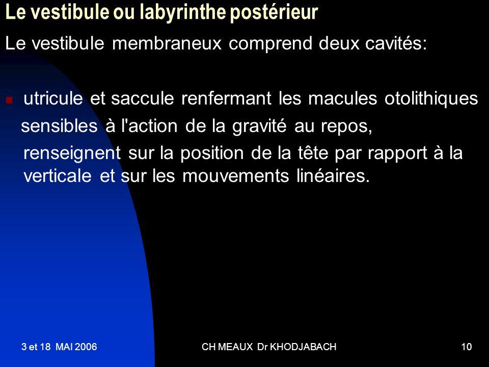 Le vestibule ou labyrinthe postérieur