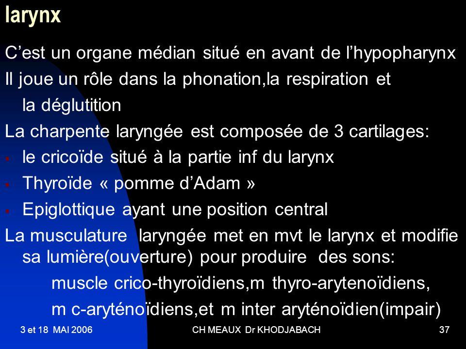 larynx C'est un organe médian situé en avant de l'hypopharynx