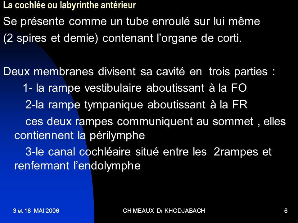 La cochlée ou labyrinthe antérieur