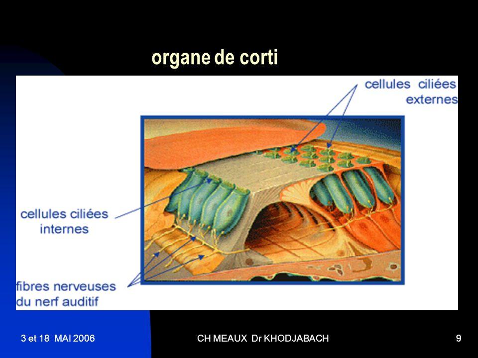 organe de corti 3 et 18 MAI 2006 CH MEAUX Dr KHODJABACH
