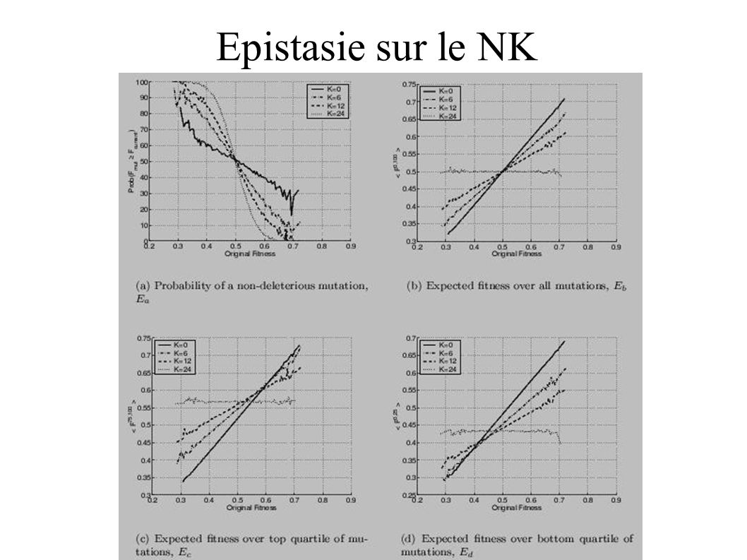 Epistasie sur le NK