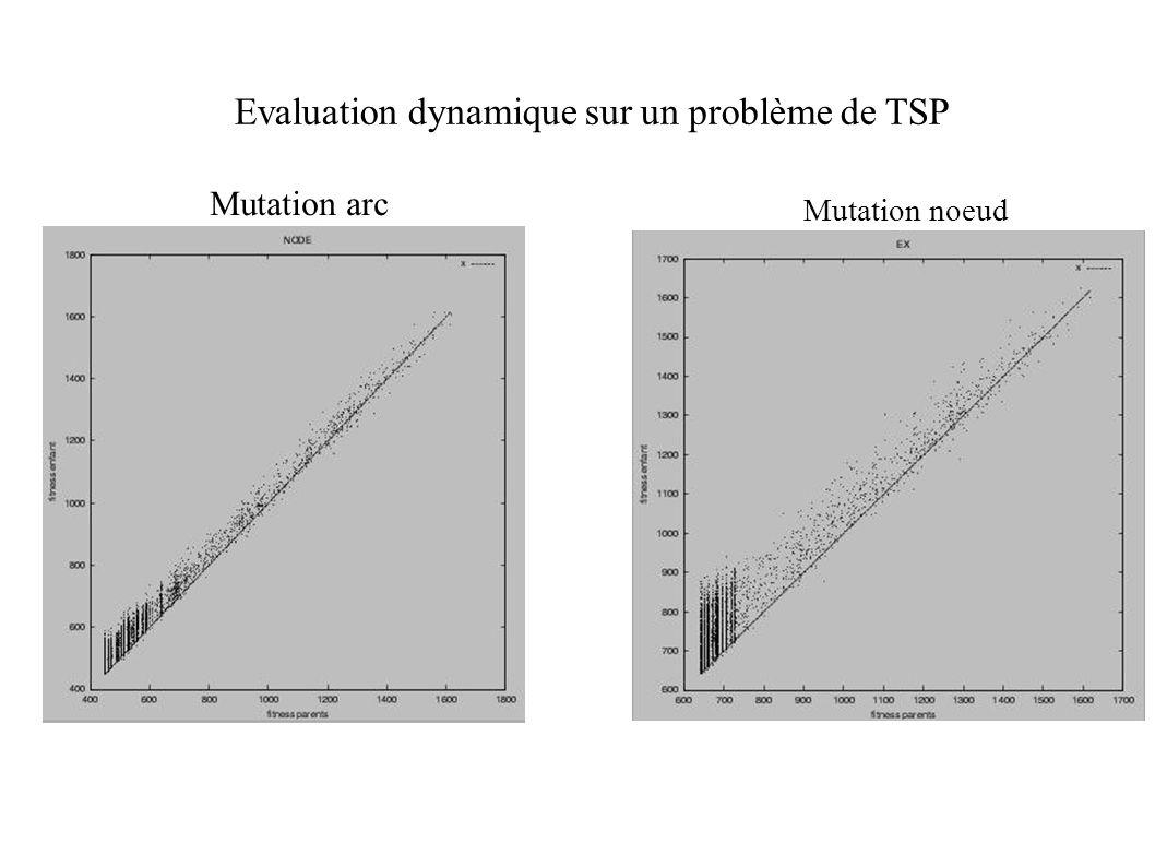 Evaluation dynamique sur un problème de TSP
