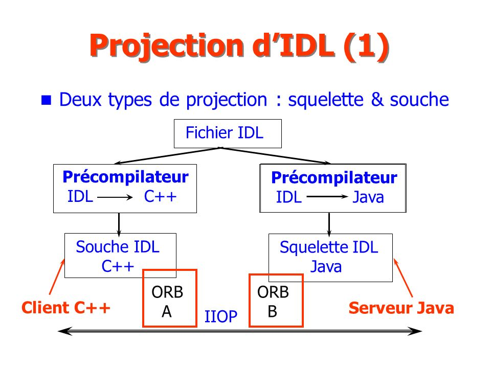 Projection d'IDL (1) Deux types de projection : squelette & souche