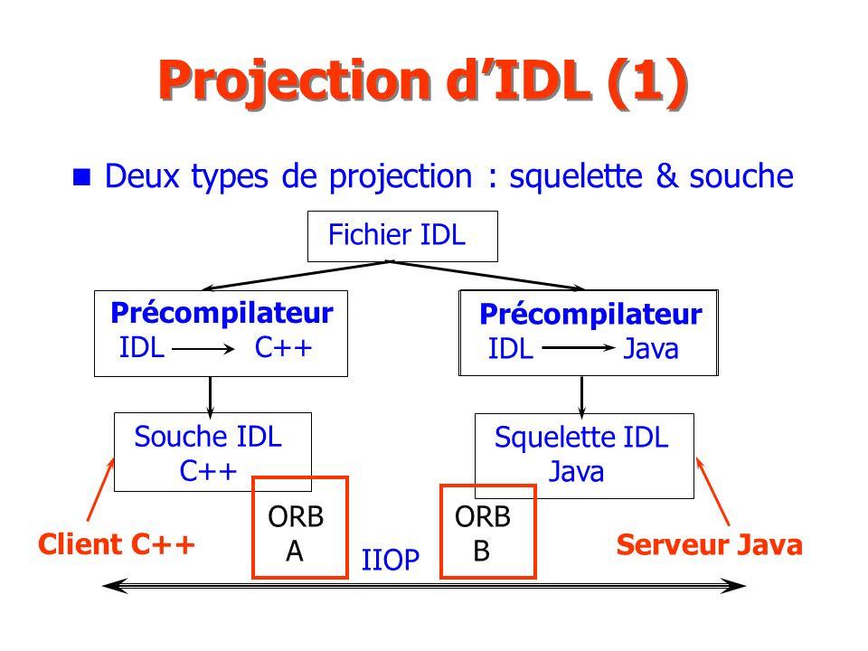 Projection d'IDL (1) Deux types de projection : squelette & souche