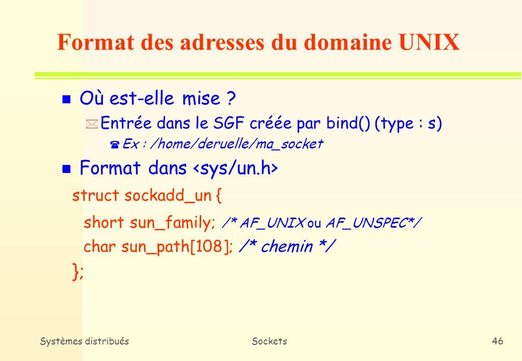 Format des adresses du domaine UNIX