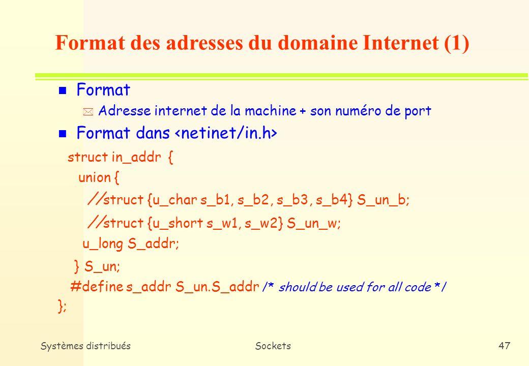 Format des adresses du domaine Internet (1)