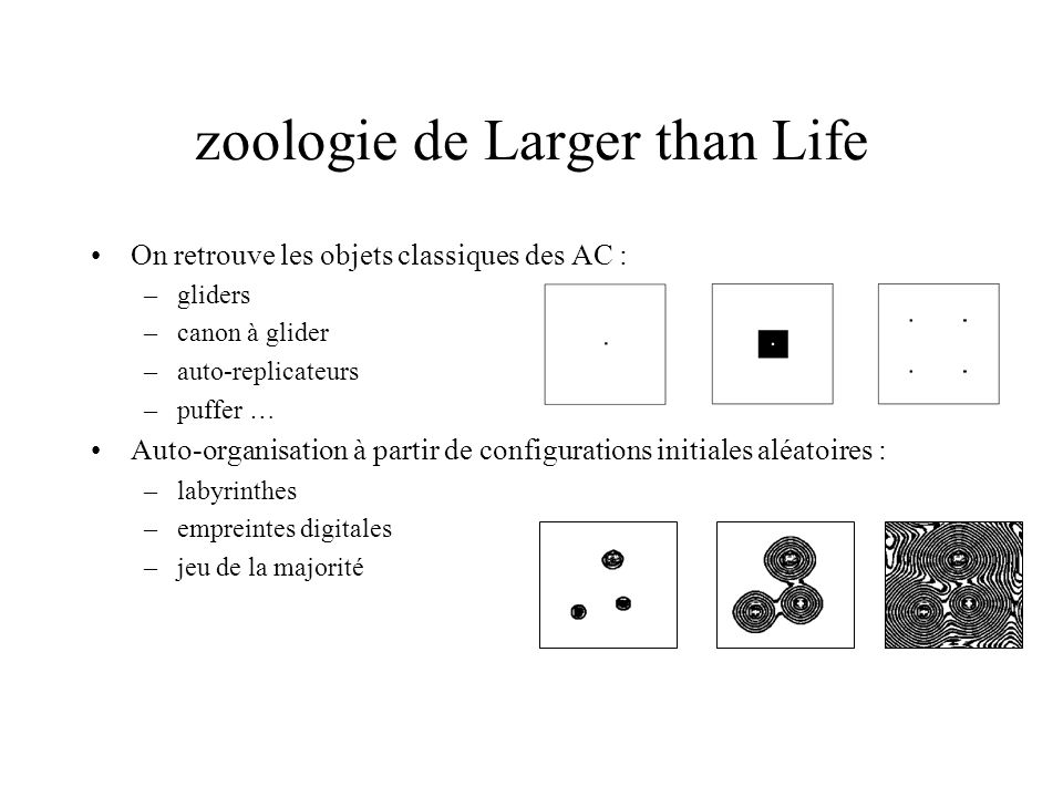 zoologie de Larger than Life