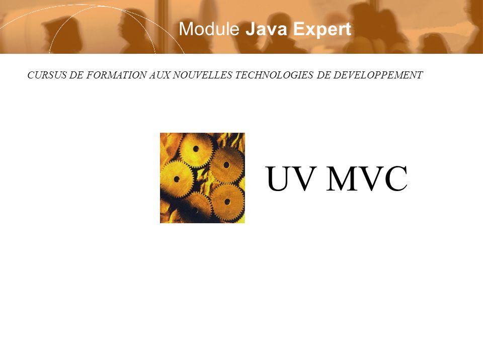 UV MVC Module Java Expert