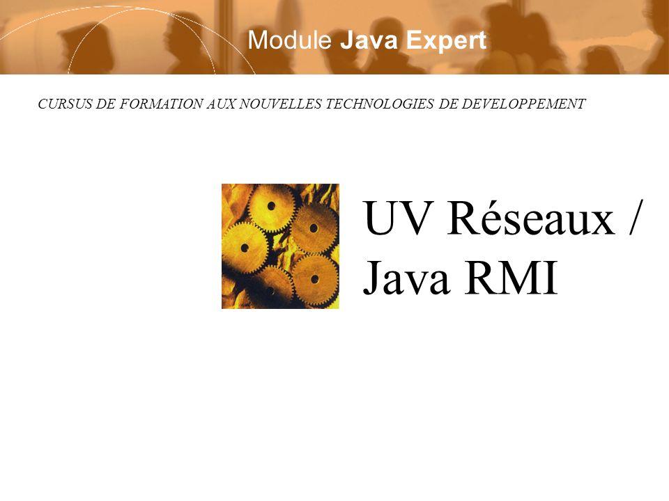 UV Réseaux / Java RMI Module Java Expert