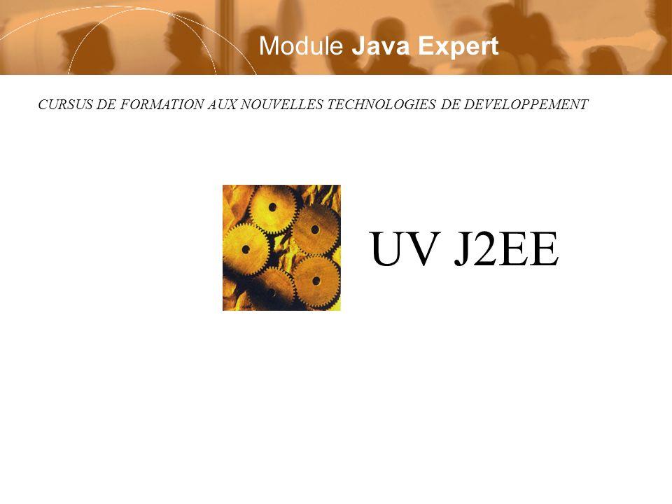 UV J2EE Module Java Expert