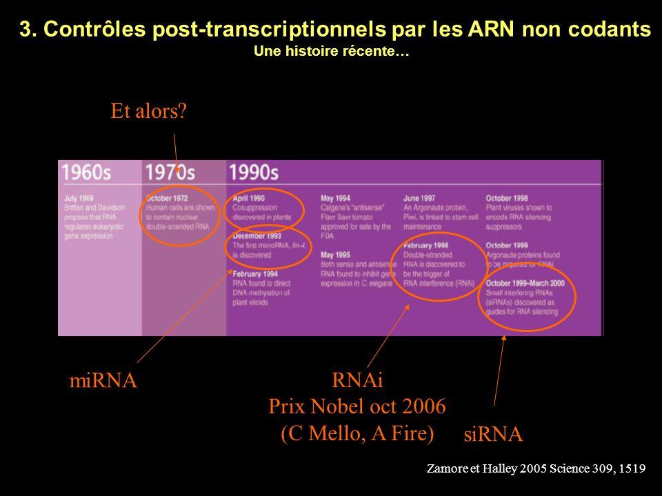 3. Contrôles post-transcriptionnels par les ARN non codants