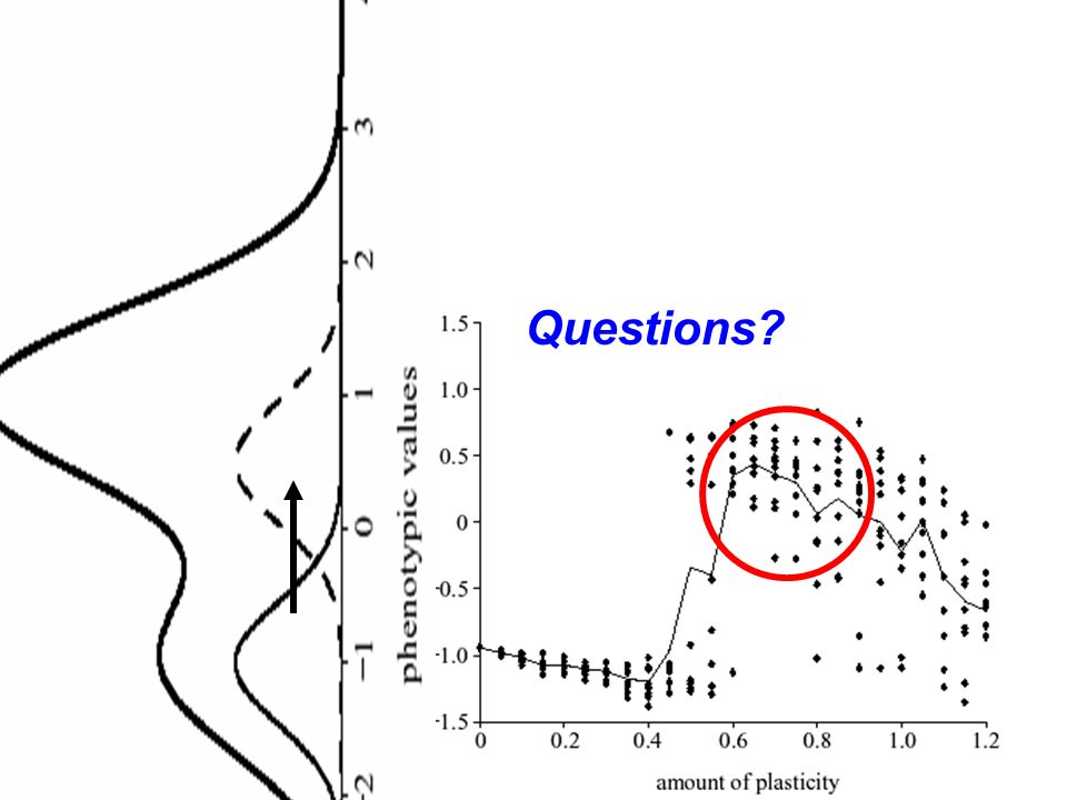 Questions Price et al. 2003, Proceedings B