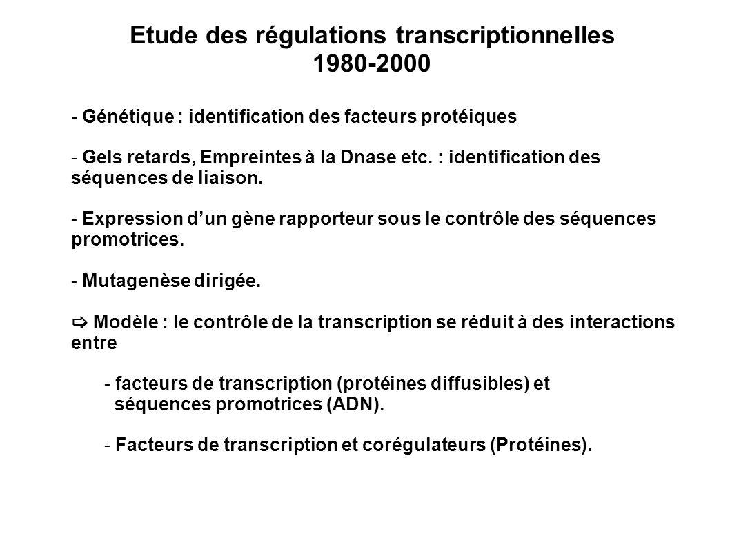 Etude des régulations transcriptionnelles