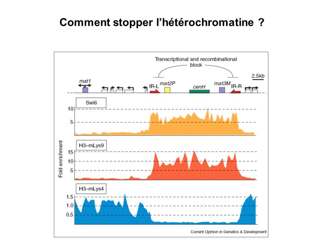 Comment stopper l'hétérochromatine