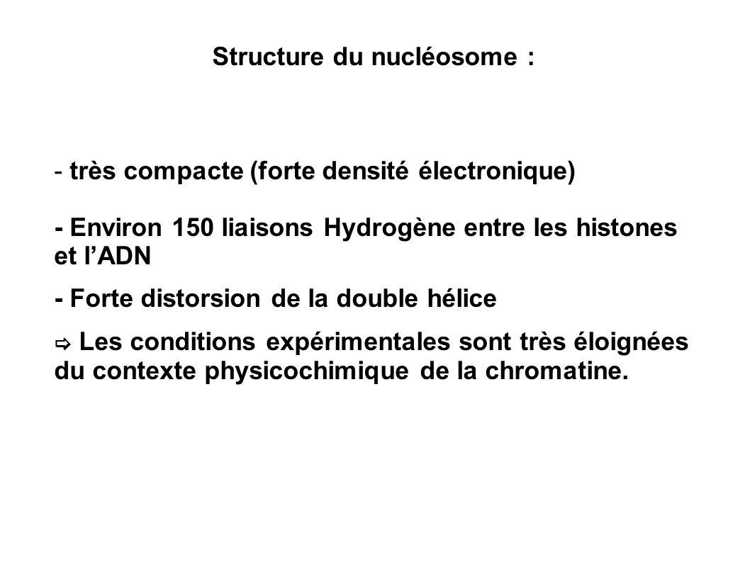 Structure du nucléosome :