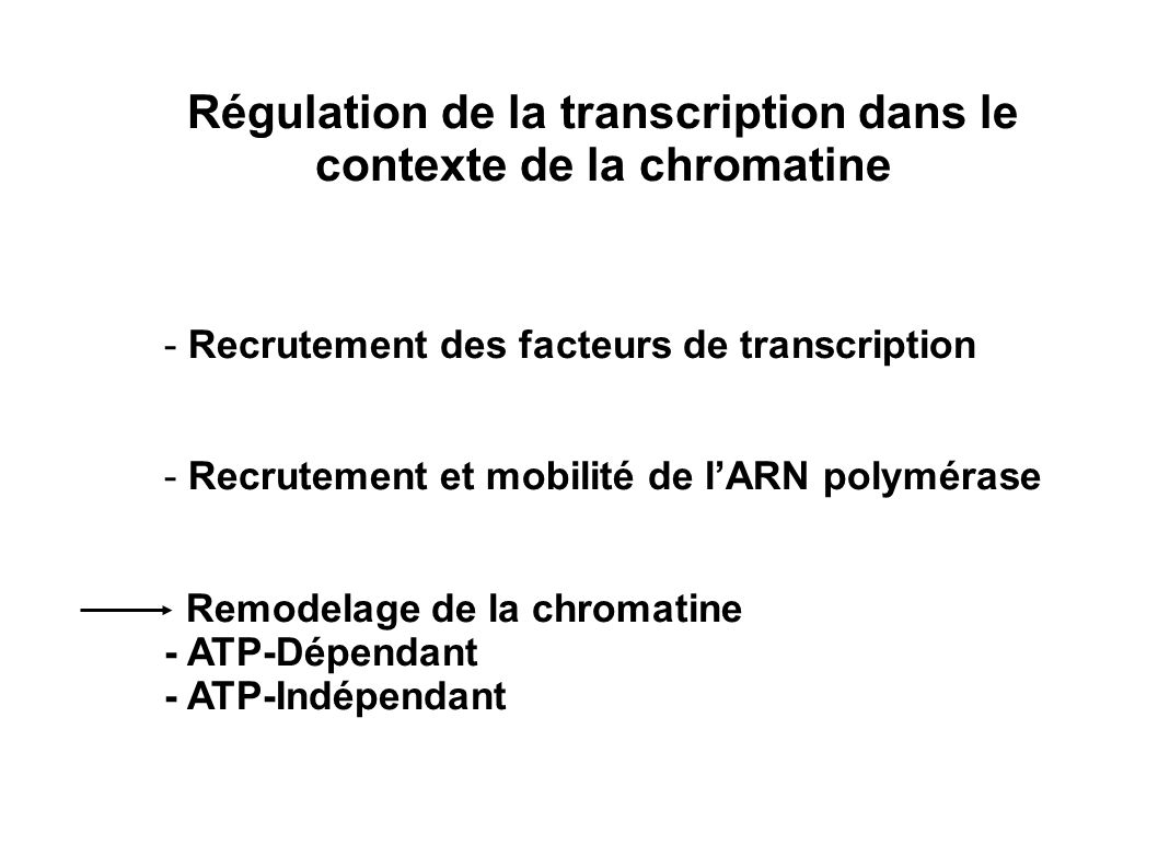 Régulation de la transcription dans le contexte de la chromatine