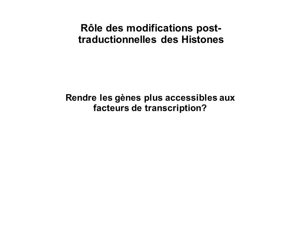 Rôle des modifications post- traductionnelles des Histones