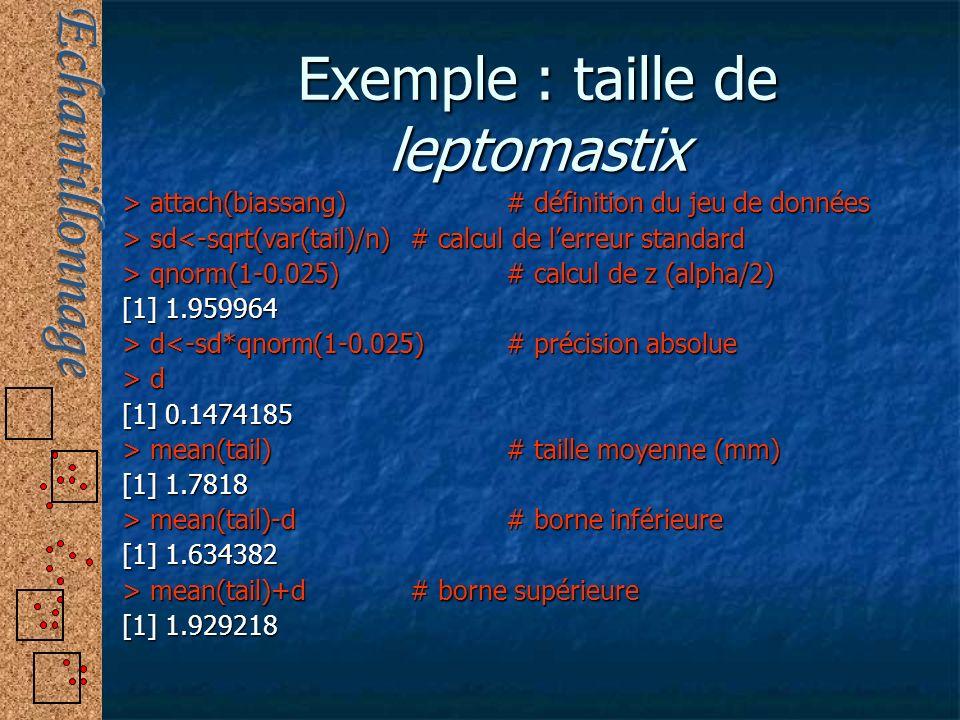 Exemple : taille de leptomastix