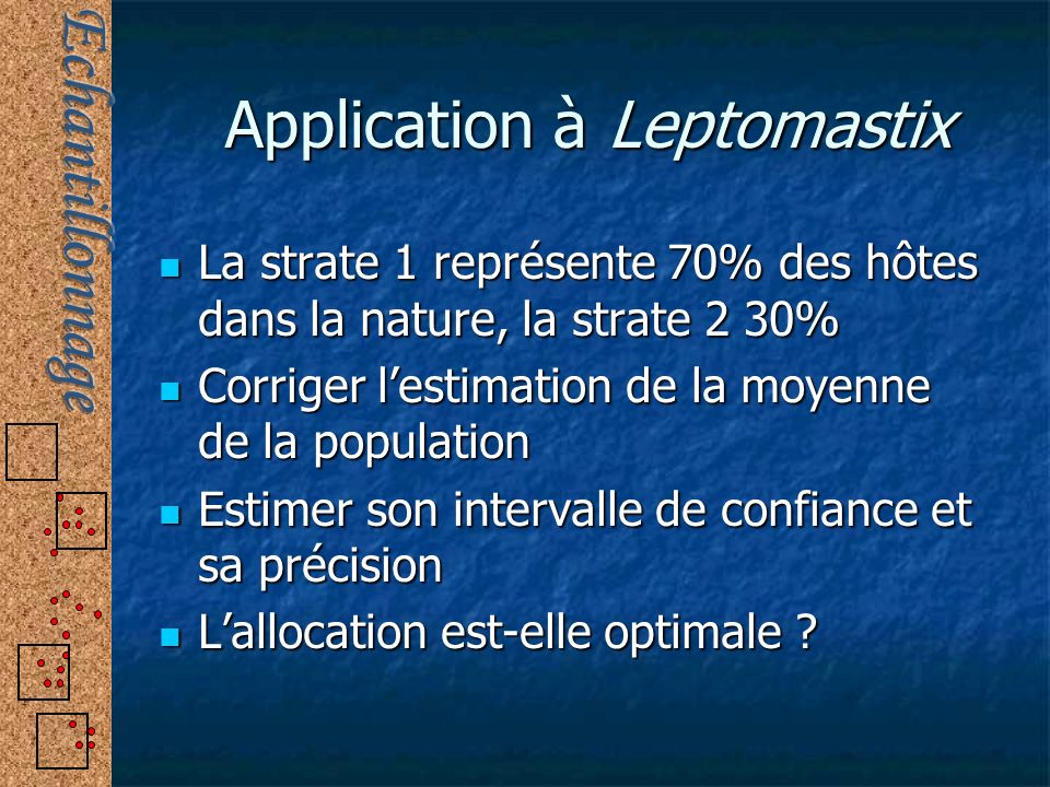 Application à Leptomastix