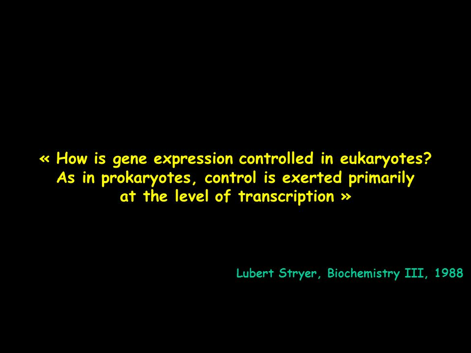 « How is gene expression controlled in eukaryotes
