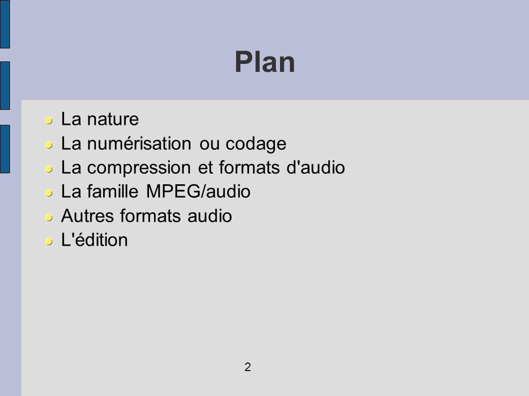 Plan La nature La numérisation ou codage