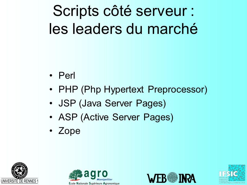 Scripts côté serveur : les leaders du marché
