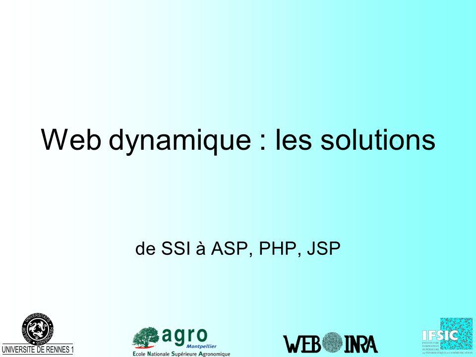 Web dynamique : les solutions