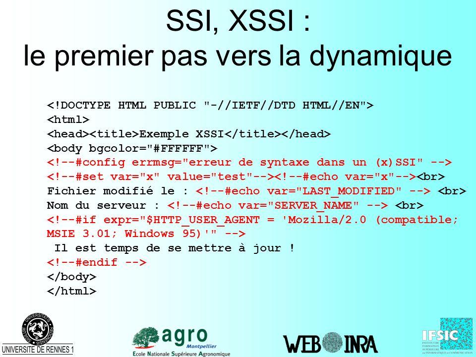 SSI, XSSI : le premier pas vers la dynamique