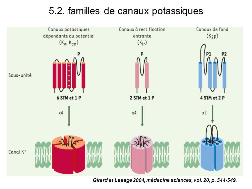 5.2. familles de canaux potassiques